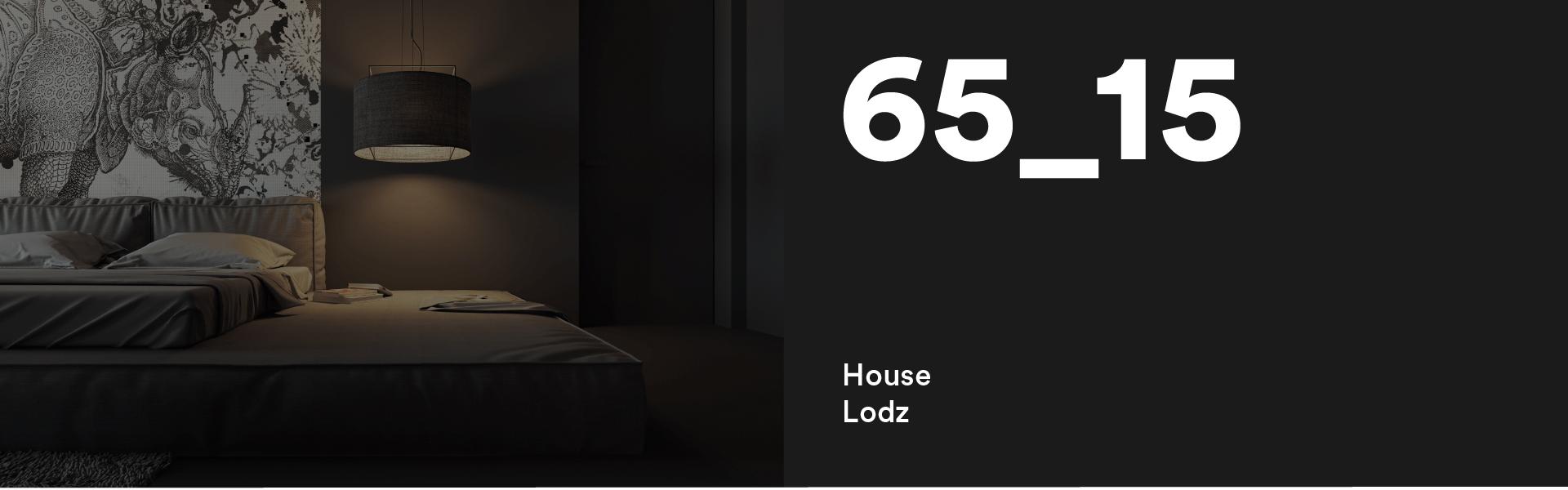 65_15 House Lodz